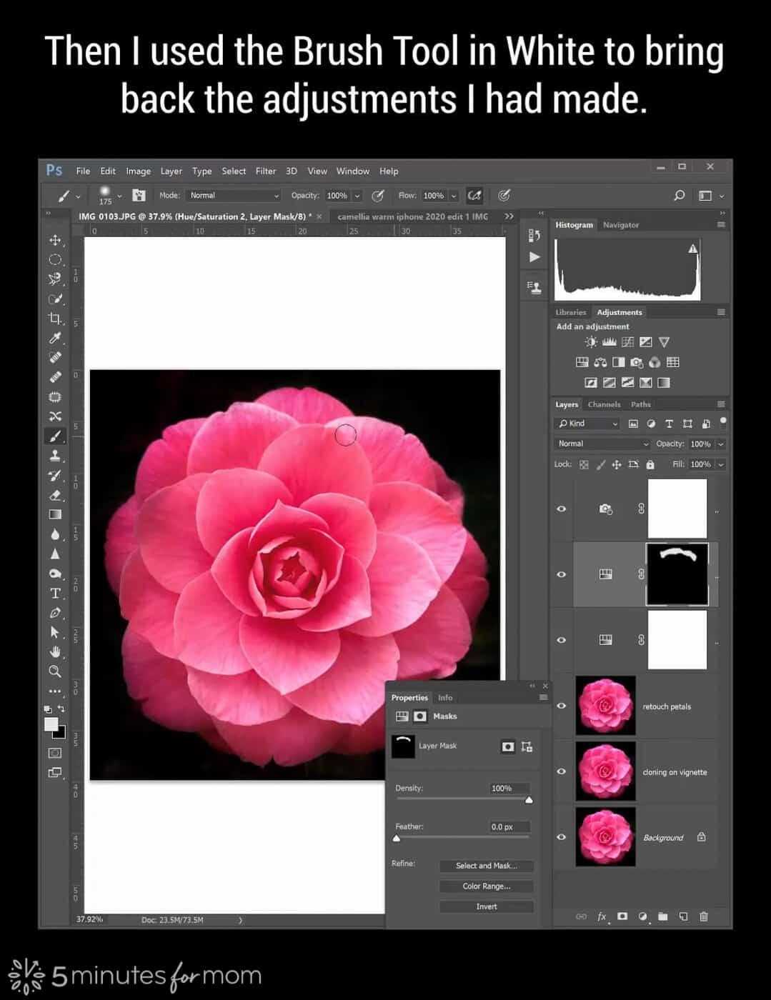 using a layer mask in Photoshop